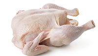 Offering whole frozen halal chicken grade a available for shipment