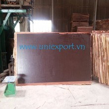 phenolic construction plywood/ film faced plywood for construction/ first class material from Uniexport manufacture