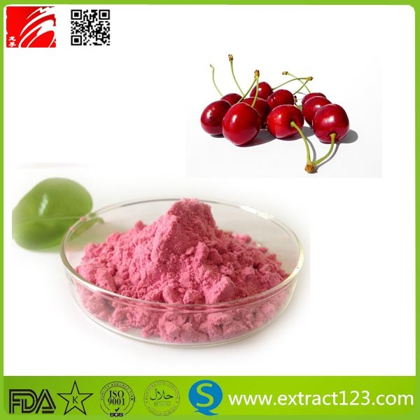 Health Benefit Dried Acerola Cherry Vitamin C Powder/Acerola Cherry Extract