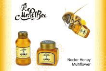 Mr. PolBee honey
