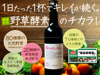 Nourishing fermented enzyme drink with coenzyme Q10 Japan