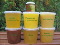 Natural Ukraine Honey - Acacia - Motley grass - Linden - Buckwheat and variety of bee products; products of bee wax.