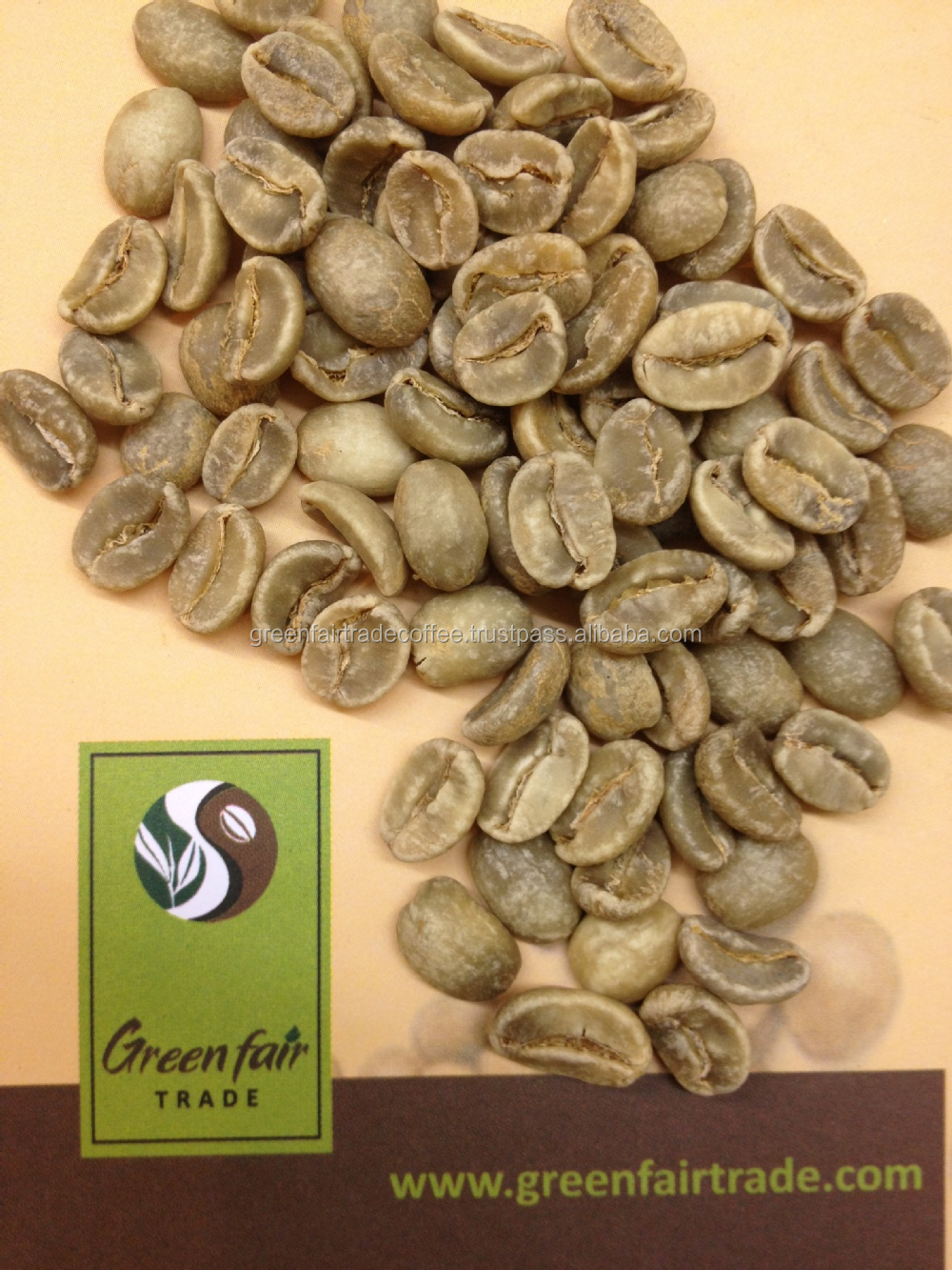 Robusta washed Green Coffee Beans from Vietnam