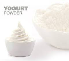 High Quality Yogurt Powder