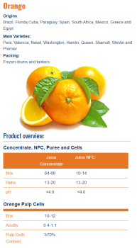 Concentrated Pure Orange Juice from Israel