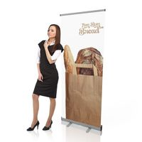 Roll-up VISION Europe 85x200cm