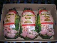 Frozen Turkey Thigh Meat, Skinless, Boneless