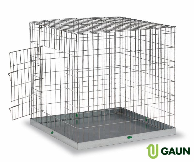 Show cage for dogs large