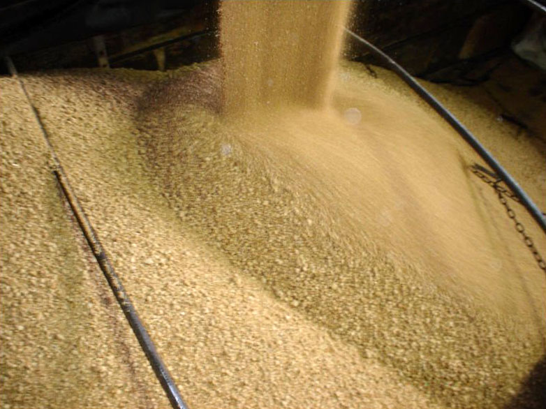 High Grade Soybean Meal 65% Protein For Animal Feed