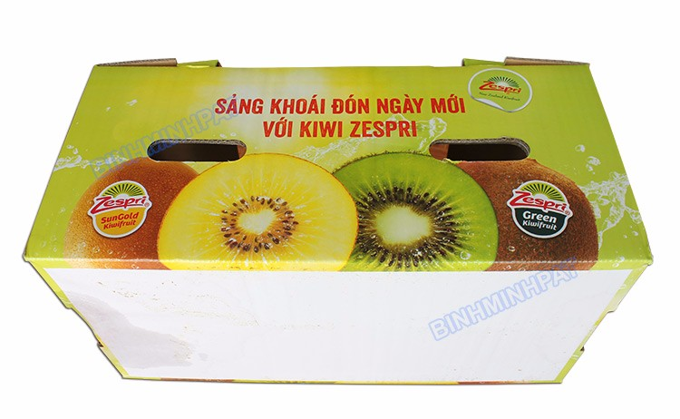 kiwi fruit packaging corrugated carton box Singel wall fruit shipping box with die cut handles fruits