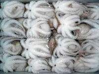 frozen baby octopus cut price baby octopus Hot Sale baby octopus flower high quality