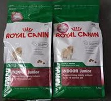 Royal Canin Mini Indoor Junoir Dogs Food