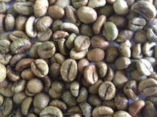 Robusta Coffee green bean