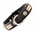 Designer leather dog training collar