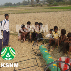 Agriculture rice planting machine and prices