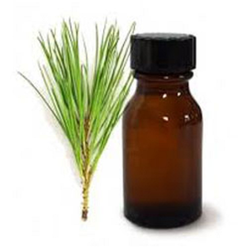 100% Pure and Natural Pine Essential Oil
