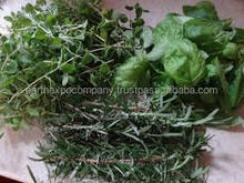 Freeze Dried Herbs