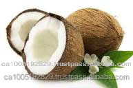 Virgin Coconut Oil (VCO)