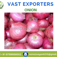 Wholesale Fresh Onion Yellow Onion Red