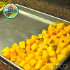 New Instant Quick Frozen Mango chunk - IQF process applied Chunked mango with BEST SALES 2015 export from Vietnam