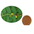 Wild Cassia Nomame Extract 8% Flavanol,GMP Manufacturer
