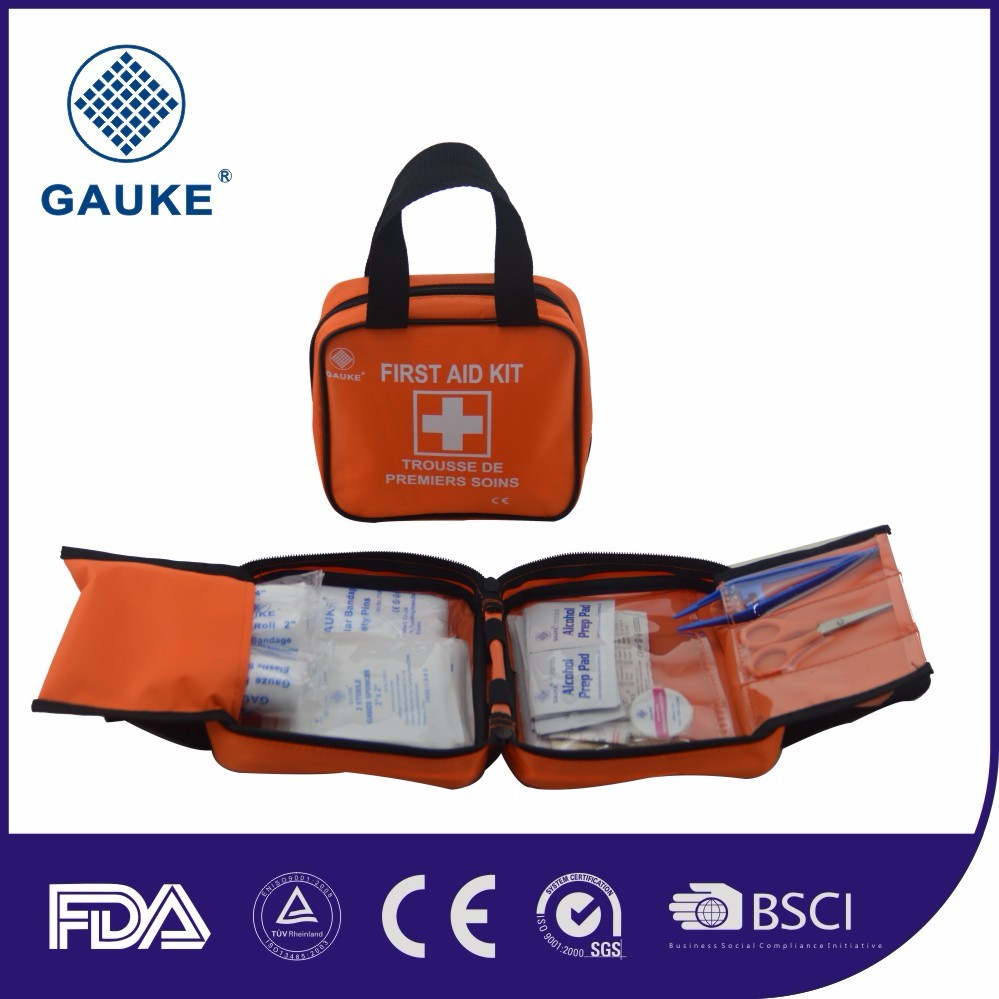 Hot Sale 100 Piece First Aid Kit / Survival Kit/First Aid Bag