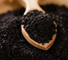 Good Quality Kalonji Oil Black Seed Habbatus Sauda 100% Pure Oil