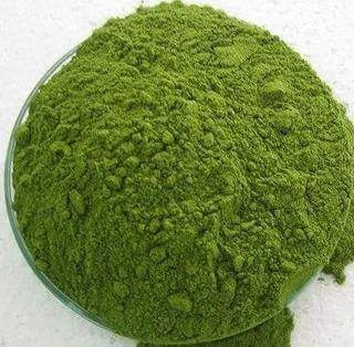 India Imported Raw Material Moringa Dried Leaves Powder/Moringa Dried Leaves Extract
