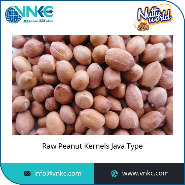 Affordable Price Easy to Digest Raw Peanuts Available for Wholesale Selling