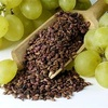 Talya Grape Seed Oil