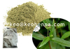 100% Natural Bhringraj Powder Extract