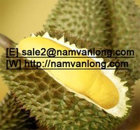 MONTHONG DURIAN at VERY HIGH QUALITY and THE BEST PRICE
