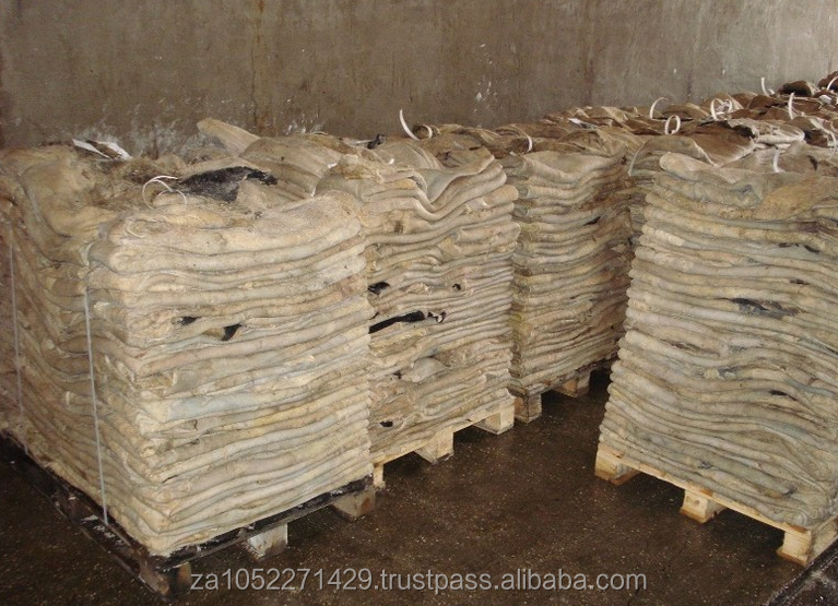 Wet Salted Donkey Hides,/Salted caw Hide/Sheep Hide /Also in Dry Hide