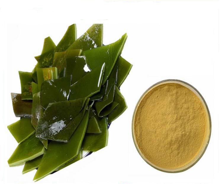 Honson Ingredient: Natural Herbal Extract Sea Belt P.E. Fucoxanthin