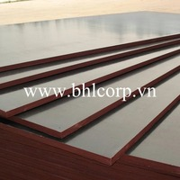 Best Quality Film Faced Plywood For