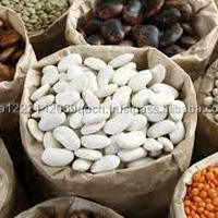 Organic Large Butter Beans Large White