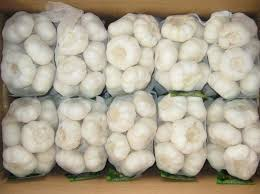 2016 New Crop China Good Price Fresh Purple Garlic