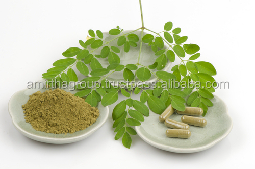 MORINGA POWDER LEAF ORGANIC