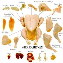 Grade A Halal Frozen Chicken Feet, Paws, Breast, Whole Chicken, Legs and Wings Brazil.