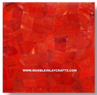 Red Carnelian Semi Precious Stone Wall Decorative Tile