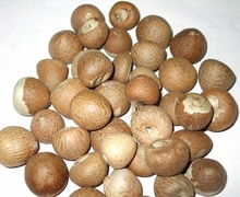 100% Betel Nuts cheap price