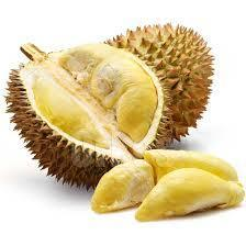 High Quality Fresh Durians For Export