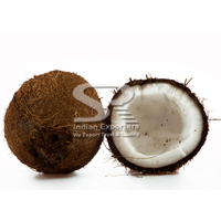 Brown Semi Husked Packed Coconuts for Israel Market