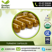 Top Graded Seller Turmeric Capsules at Best Price for Sale