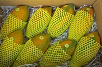Papaya & Seeds - Visit www.agriprices.com For Wholesale Price Discounts On Papaya