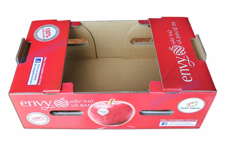 Hight quality Corrugated apple fruit packaging boxes for fruit shipping