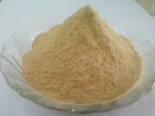 BEST RATE QUALITY INDIAN DRY GARLIC POWDER
