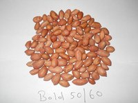 New year crop bold peanut available from factory Direct sales