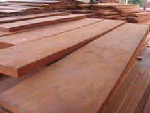Bubinga square logs (cants)
