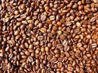Roasted Liberica coffee Beans